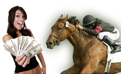Horse gambling sites