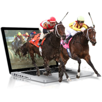 horse racing betting sites